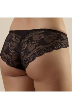 Snejanna Briefs With a Low Waistline and Lace Back-piece- Black