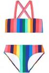 Multi Rainbow Crush Stripe Tube Bikni Set